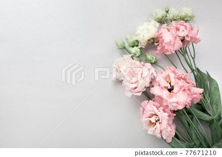 White and pink eustoma flowers, flatlay on grey background 77671210