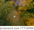 Aerial view of marriage couple lying in a shape of heart made of fall Autumn leafes woods drone photo romantic love 77710064