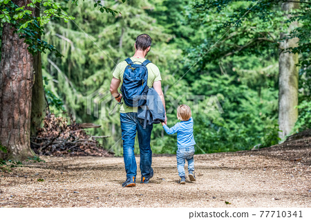 father holding hand of little son with backpack hiking in forest 77710341