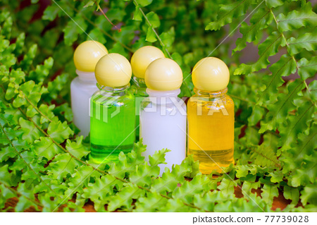 Small banks with cream in a fern, Spa 77739028