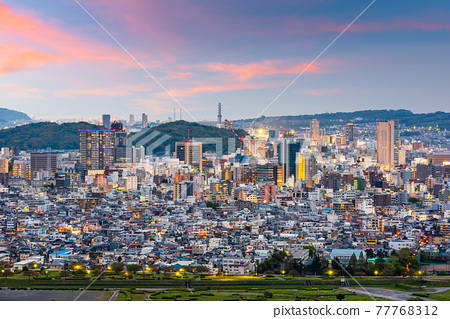 Shizuoka City, Japan Downtown Skyline 77768312