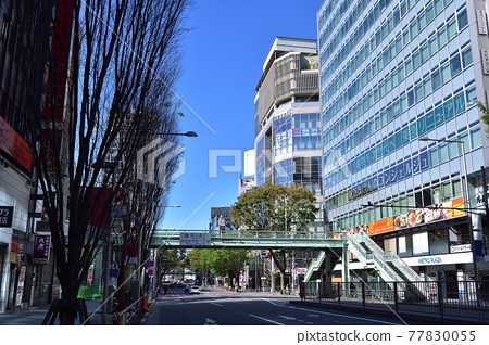 shibuya, cityscape, scene 77830055