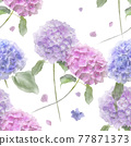 Seamless floral design with hydrangea flowers . Endless pattern. 77871373