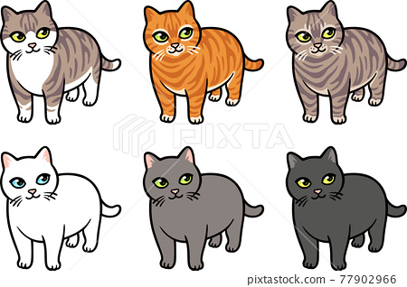 Cartoon cat breed drawings set 77902966