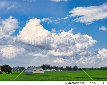 Blue sky and clouds 77976231