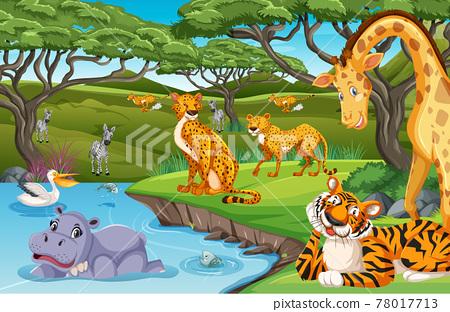 Wild animals in the jungle 78017713