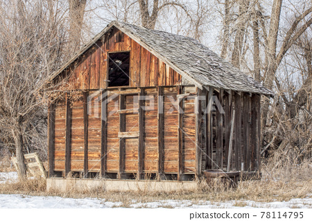 small rustic barn in woods 78114795