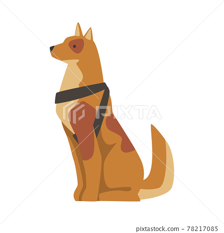 Seeing Eye Dog, Specially Trained Guide Pet Animal Cartoon Vector Illustration 78217085