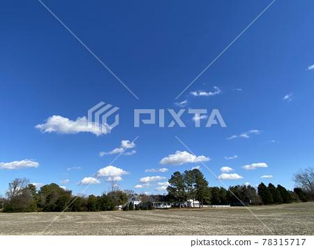 sky, field, blue sky 78315717