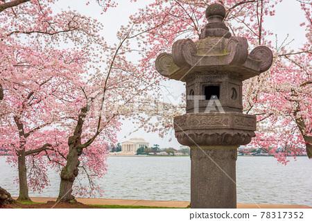 The Japanese Lantern at West Potomac Park around the Tidal Basin 78317352