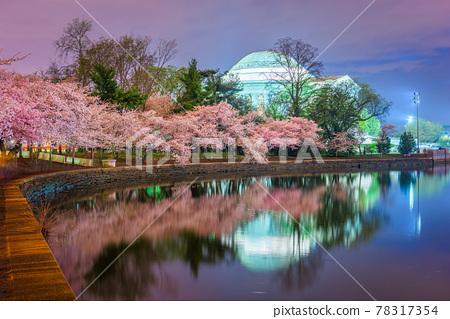 Washington, DC at the Jefferson Memorial During Spring Season 78317354
