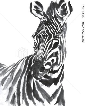 animal, animals, design 78343075
