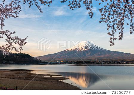 Mt. Fuji, Japan on Lake Kawaguchi 78350777