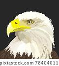 像素風格的老鷹頭部特寫 78404011