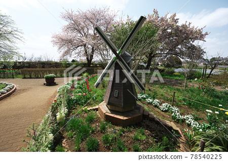 Akebonosan Agricultural Park 78540225