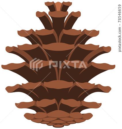 pinecone, vegetation, vegetative 78546659