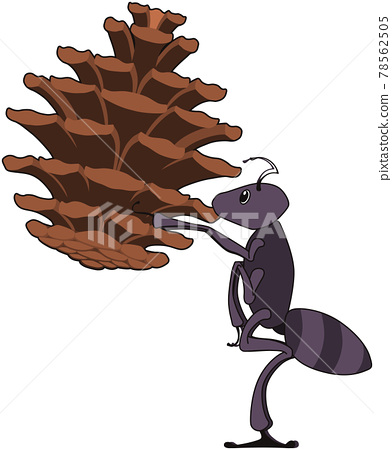 Ants that deliver pine cones (with outline) 78562505