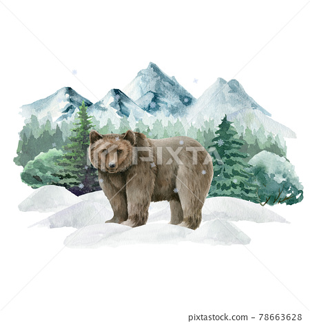 Bear animal in winter landscape. Watercolor illustration. Wild cute grizzly bear in winter forest. Festive image print. Hand drawn grizzly on white snow, mountains, fir trees. Side view forest animal 78663628