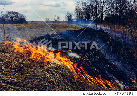 Let's say stop burning dry grass, it is dangerous 78797193