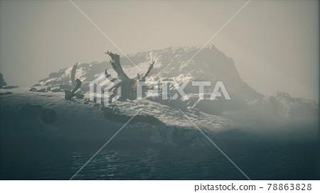 rocky cliff with sand beach in deep fog 78863828