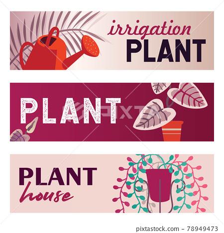 Home plants banners set 78949473