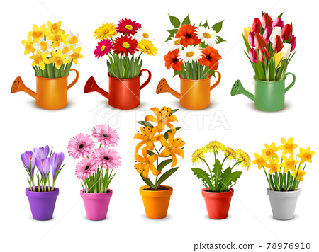 Mega collection of spring and summer colorful flowers in pots,  watering cans and vases. Vector 78976910