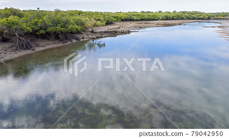 Aerial Of A Creek At Low Tide 79042950