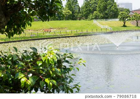 공원, 파크, 사카이 79086718
