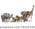 Group of animals isolated on white background. 79103140