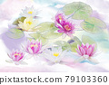 Pink and white Water Lily flowers . Digital painting. 79103360