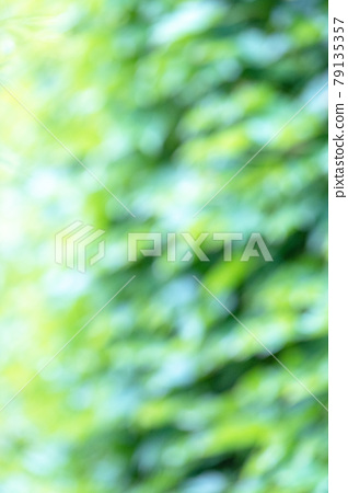 Background material: Fresh green / cool image 79135357