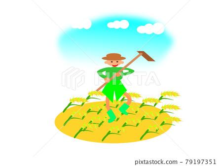 大米收割 79197351
