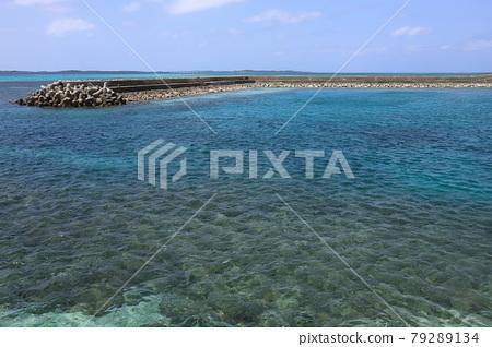 Okinawa, blue water, marine 79289134