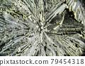 Salt crystal macro close up under the light microscope, magnification of 100 times, microscope objective 10 79454318