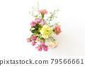 bloom, blossom, blossoms 79566661