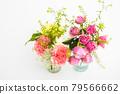 bloom, blossom, blossoms 79566662