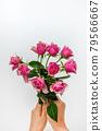 bloom, blossom, blossoms 79566667