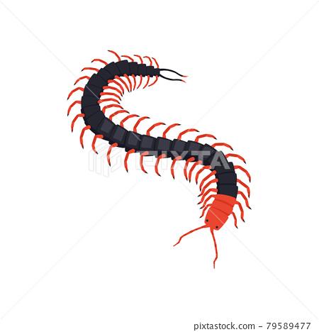 Centipede Isometric Illustration 79589477