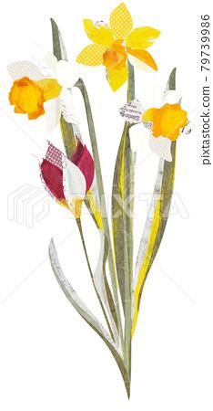 flower, flowers, daffodil 79739986