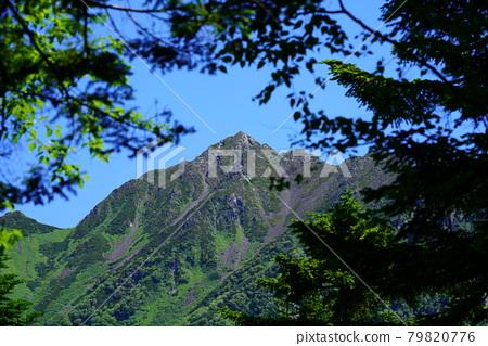 산, 여름, 북 알프스 79820776