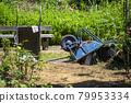 wheelbarrow, monocycle, unicycle 79953334