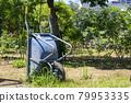 wheelbarrow, monocycle, unicycle 79953335