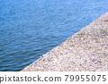 bank, embankment, ocean 79955075