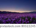 曙光明亮,天氣晴朗,漂亮的花正盛開著。 80322245