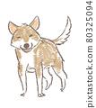 微笑的狗 80325094