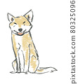 illustration 數字動畫 醫療插圖 80325096