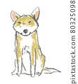 illustration 數字動畫 醫療插圖 80325098