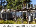 abandoned power plant with rusty wires, structures, and equipment 80329148