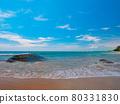 Tropical sandy beaches with waves (Khaorak, Phang Nga Province, Kingdom of Thailand) 80331830