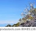 야쓰가타케, 야츠가타케, 산 80485136